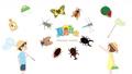 夏季昆虫收藏和儿童动画 65710680