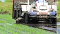 Rice transplanter, rice planting, agriculture 65855397