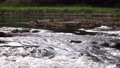 Picturesque 4K video of river cascades at evening with stone and may flies above water surface 65919246