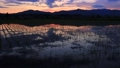 Evening scenery reflected in paddy fields May scenery in Akita Prefecture 66045905