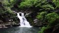 新緑の三段峡の三段滝 66076319