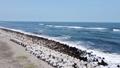 海岸【ドローン】005 66220833