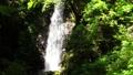 秋川渓谷の滝 66338357