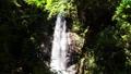 秋川渓谷の滝 66338358