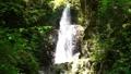 秋川渓谷の滝 66338359