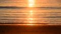 弓ヶ浜の海に映る朝日-6135272 66445774