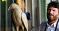 Craftsman preparing bird sculpture 4k 66590380