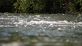 Super slow motion water floating down a river, in HD 66739335