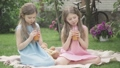 Portrait of focused Caucasian twins drinking orange juice on summer picnic. Front view of charming brunette girls in pink and blue dresses sitting on blanket and enjoying healthful drink outdoors. 66774492