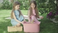 Joyful little twin sisters talking and admiring ducks bathing in pink bucket outdoors. Portrait of brunette Caucasian siblings taking care of animals on sunny summer day. Lifestyle, childhood, leisure 66774499