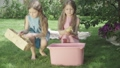 Pretty girls in dresses washing ducks in water outdoors. Wide shot portrait of charming joyful Caucasian twin sisters playing with animals bathing in pink bucket. Joy, leisure, fun, childhood. 66774501