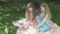 Wide shot of relaxed little girls sitting on blanket on meadow and caressing ducks. Portrait of charming pretty twins in beautiful dresses resting outdoors on sunny day. Leisure, childhood, joy. 66774505