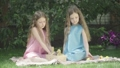 Cute little Caucasian twins sitting outdoors with small ducks. Portrait of beautiful identical sisters resting on summer day together. Childhood, beauty, leisure, lifestyle, happiness. 66774507