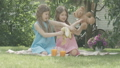 Portrait of charming happy twin sisters playing with soft toys on backyard. Caucasian brunette girls resting on sunny day outdoors. Childhood, joy. Cinema FullHD ProRes HQ. 66775430
