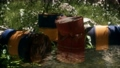 Rusty barrels in green forest 66836006