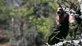 saboteur or scout watches through binoculars 66878124