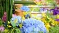 화려한 꽃이 감도는 꽃 세숫물 66910427