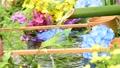 화려한 꽃이 감도는 꽃 세숫물 66910535
