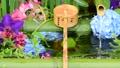 화려한 꽃이 감도는 꽃 세숫물 66910539