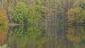 秋の御射鹿池に映り込む森(ズームアウト) 66914854