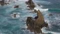 Sea waves and volcanic rocks 66921568