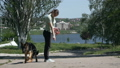 Young dogs trainer with a dog in a park near the lake in summer. Do the exercises. German shepherd training 66934450