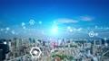 都市とネットワーク CGアニメーション タイムラプス 66941330