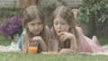 Portrait of cute twin sisters posing on backyard on sunny summer day. Brunette curly-haired girls with grey eyes drinking orange juice and looking at camera smiling. Joy, leisure. Cinema FullHD ProRes 66954045