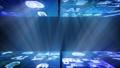 デジタル ネットワーク テクノロジー AI 人工知能 データ 通信 システム 情報 コンセプト 背景 67184815