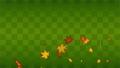高升的秋季顆粒和方格圖案 67252807