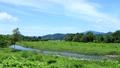 秋田縣夏季河道青空景觀 67808589