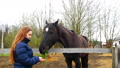 The girl feeds the black horse with grass. 67845507