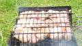 Chicken meat on barbecue grill. Fire and smoke 4k video. BBQ party 67927670