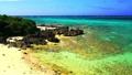 宫岛的美丽的珊瑚礁海 68059696