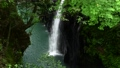 高千穗峽谷的馬奈瀑布和新鮮綠化 68137269