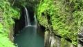 高千穗峽谷的馬奈瀑布和新鮮綠化 68137270