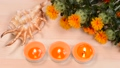 Safflower, shells and candles on wood table 68269692