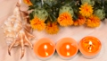 Safflower, shells and candles on wood table 68269694