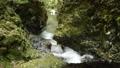 A clear stream flowing between cliffs 68375391