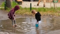 Children playing in water puddle 68446655