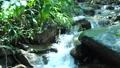 キャンプ場の小川の水の流れ 68729421