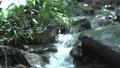 キャンプ場の小川の水の流れ 68729423