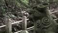 Komainu background 68865794