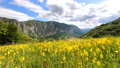 Mountains Summer Day Time Lapse 68984623