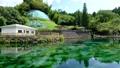 透明度の高い美しい丸池公園の風景 69032812