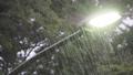 街路灯と土砂降りの雨 69190110