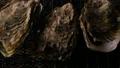 牡蠣燒烤爐 69223918