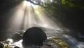 菊池渓谷の光芒 69232796