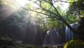 鍋ヶ滝と光芒 69232979