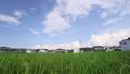 地方の住宅地と水田の風景 69288794